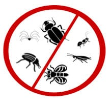 Anti Bugs Company in Kuwait